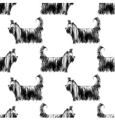 seamless pattern with hand drawn yorkshire vector image