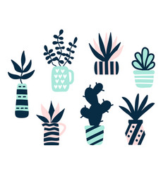 succulents plants set vector image