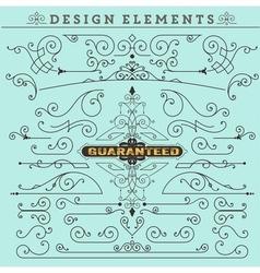 Vintage Ornaments Decorations Design vector