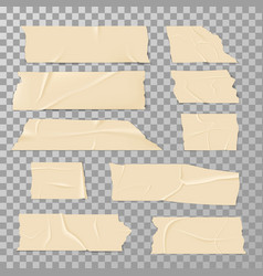 Adhesive sticky tape isolated on transparent vector