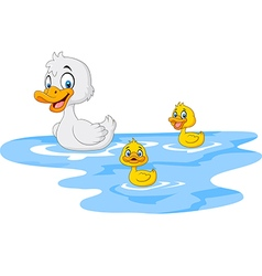 Cartoon funny mother duck with baby duck floats vector image vector image