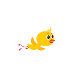 cute baby chicken character flying flapping wings vector image