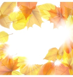 Autumn background with maple leaves plus EPS10 vector image