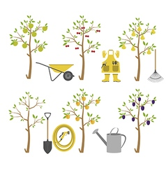 Fruit trees Garden Icon set vector image