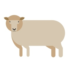 sheep flat icon vector image vector image