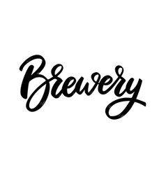 brewery lettering phrase on white background vector image