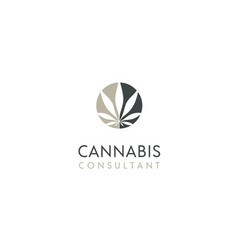 circle cannabis hemp pot leaf cbd marijuana logo vector image