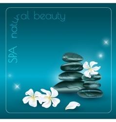 Dark stones and white flowers vector image