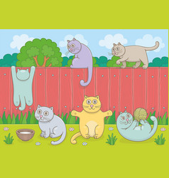 family cats vector image