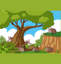 Forest scene with many anteaters vector