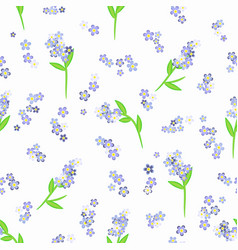 Forget-me-not flowers on white seamless vector