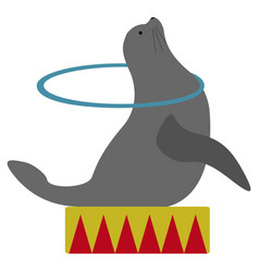 isolated circus seal vector image