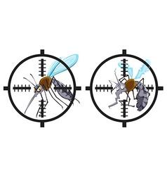 Mosquitoes being in focus vector