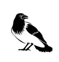 silhouette of a black crow isolated on white vector image