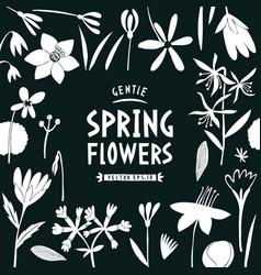 spring flowers design template scandinavian style vector image