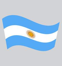 flag of argentina waving on gray background vector image vector image
