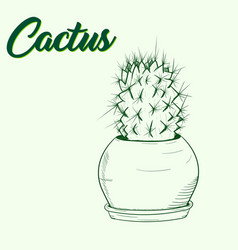 background with a green cactus in a pot vector image