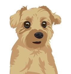 Cute Dog Portrait vector