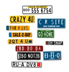 International car license plates vector