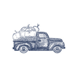 Old retro pick-up truck with vegetables vector
