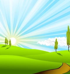 landscape fields vector image