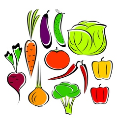 different vegetables vector image vector image