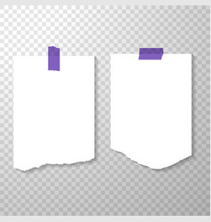 blank torned off pages with purple stickers torn vector image vector image