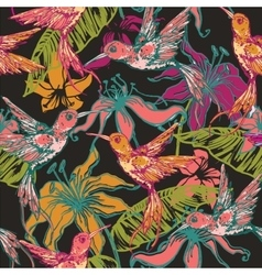 Hand drawn tropical background with colibri and vector image vector image