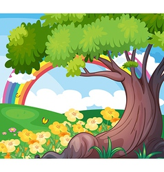 A rainbow in the sky and the beautiful flowers vector image