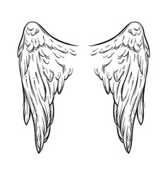 angel wings isolated on white tattoo design vector image