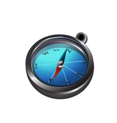 big compass icon vector image