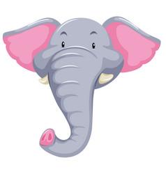 elephant head white background vector image