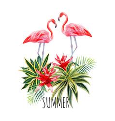 flamingo agava watercolor postcard vector image