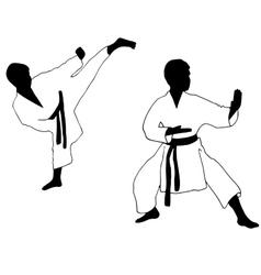 Karate boy Sport vector
