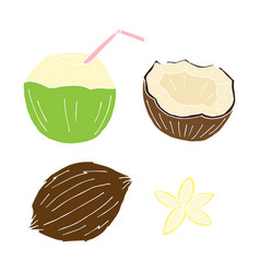 set bundle hand drawn colored coconut vector image