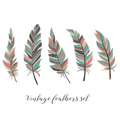 Vintage feathers set Five elegant feathers of vector