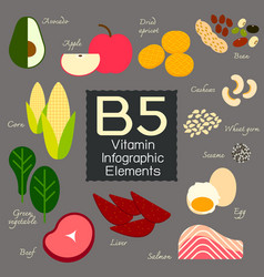 Vitamin b5 infographic element vector