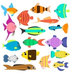 Aquarium flat style fishes icons vector image