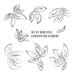 Contour ink flowers vector image vector image