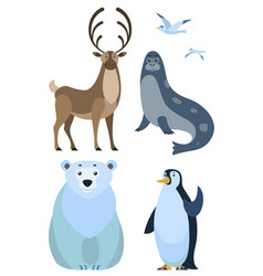 arctic animal bear and penguin deer and sea calf vector image
