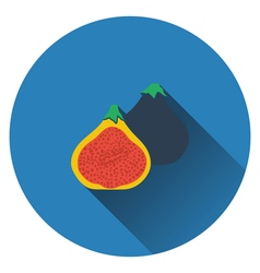 Fig fruit icon vector image