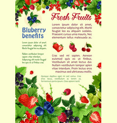 Fresh berries and fruits poster vector