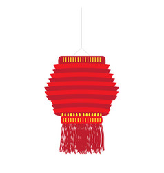isolated chinese lamp vector image