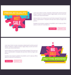 premium quality hot sale only weekend big discount vector image
