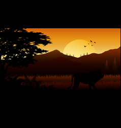 Silhouette of lion at savanah vector