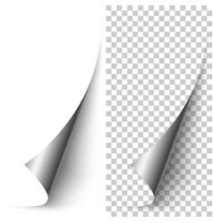 Silver foil vertical paper corner rolled up vector