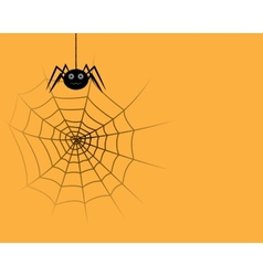 Spider in the web vector