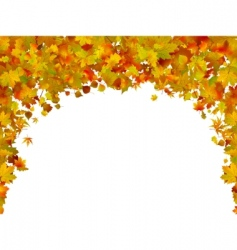 background of autumn leaves vector image vector image
