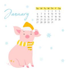 2019 calendar with funny pig monthly page vector image
