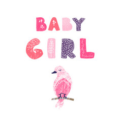 bird and hand drawn lettering - baby girl vector image